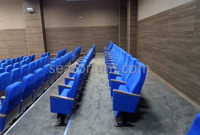 Bursa Deri OSB Auditorium Chairs Project - Seatorium™'s Auditorium