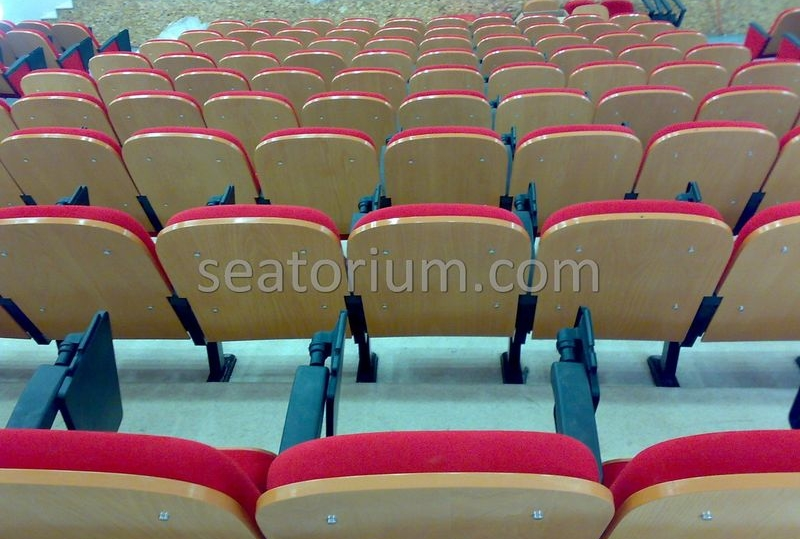 Samsun Bafra Municipality Multi Purpose Room Chairs - Seatorium™'s Auditorium